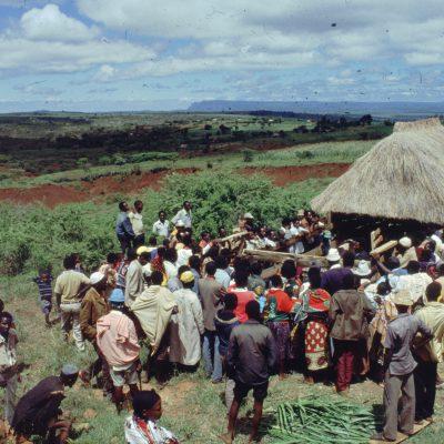 Zero grazing field day Gongali Tanzania, FAO